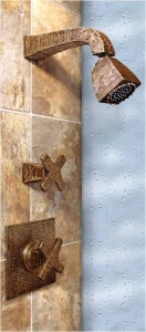 CIXX shower system